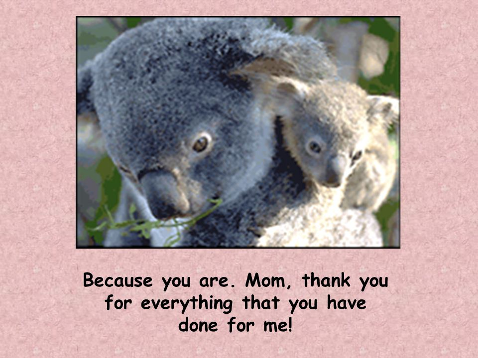 Because you are. Mom, thank you for everything that you have done for me!
