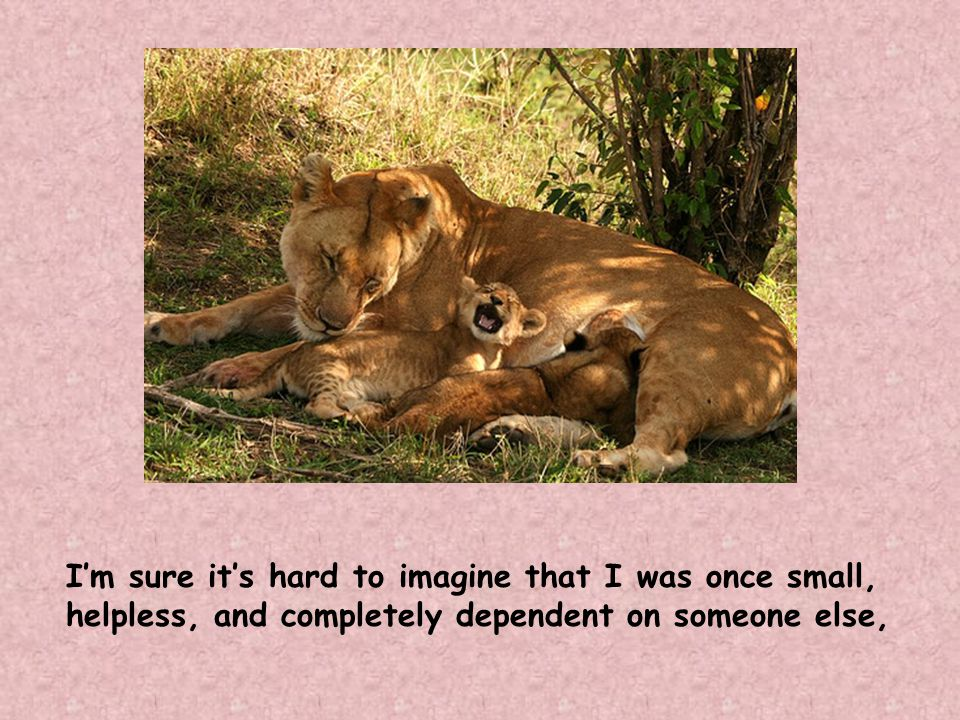 I'm sure it's hard to imagine that I was once small, helpless, and completely dependent on someone else,