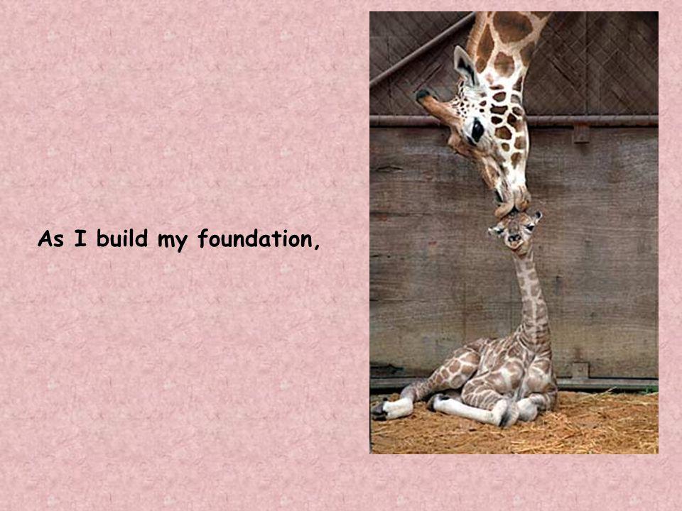 As I build my foundation,