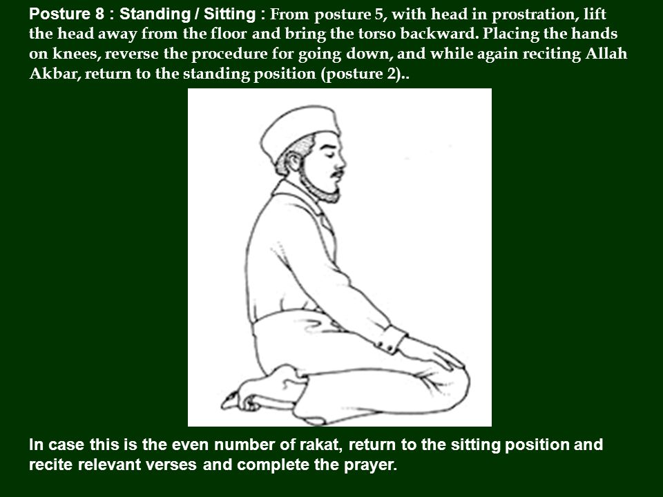 Posture 8 : Standing / Sitting : From posture 5, with head in prostration, lift the head away from the floor and bring the torso backward.