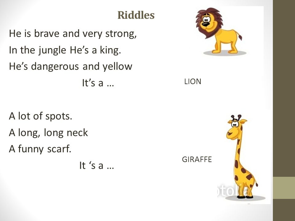 Riddles He is brave and very strong, In the jungle He's a king.