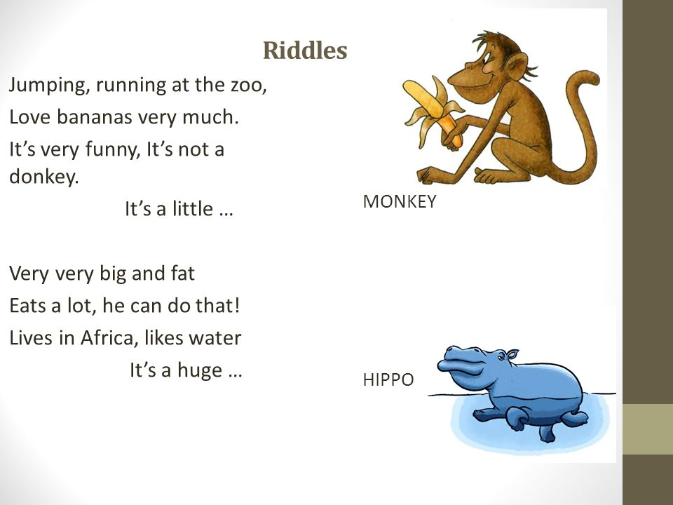 Riddles Jumping, running at the zoo, Love bananas very much.
