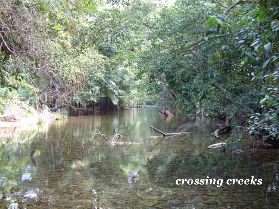 crossing creeks