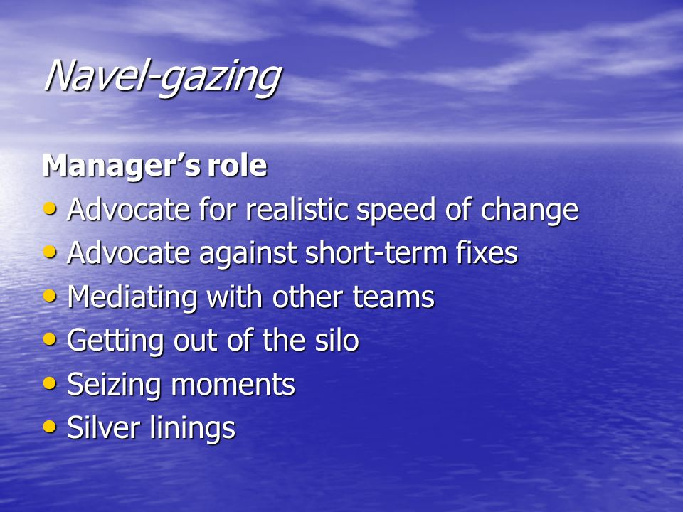 Navel-gazing Manager's role Advocate for realistic speed of change Advocate for realistic speed of change Advocate against short-term fixes Advocate against short-term fixes Mediating with other teams Mediating with other teams Getting out of the silo Getting out of the silo Seizing moments Seizing moments Silver linings Silver linings