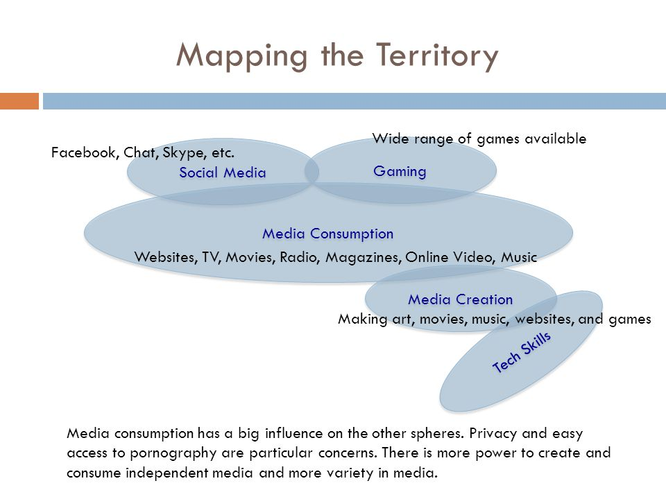 Mapping the Territory Social Media Gaming Media Consumption Media Creation Tech Skills Facebook, Chat, Skype, etc.