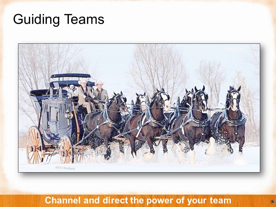 Guiding Teams Channel and direct the power of your team