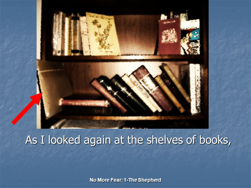 No More Fear: 1-The Shepherd As I looked again at the shelves of books,