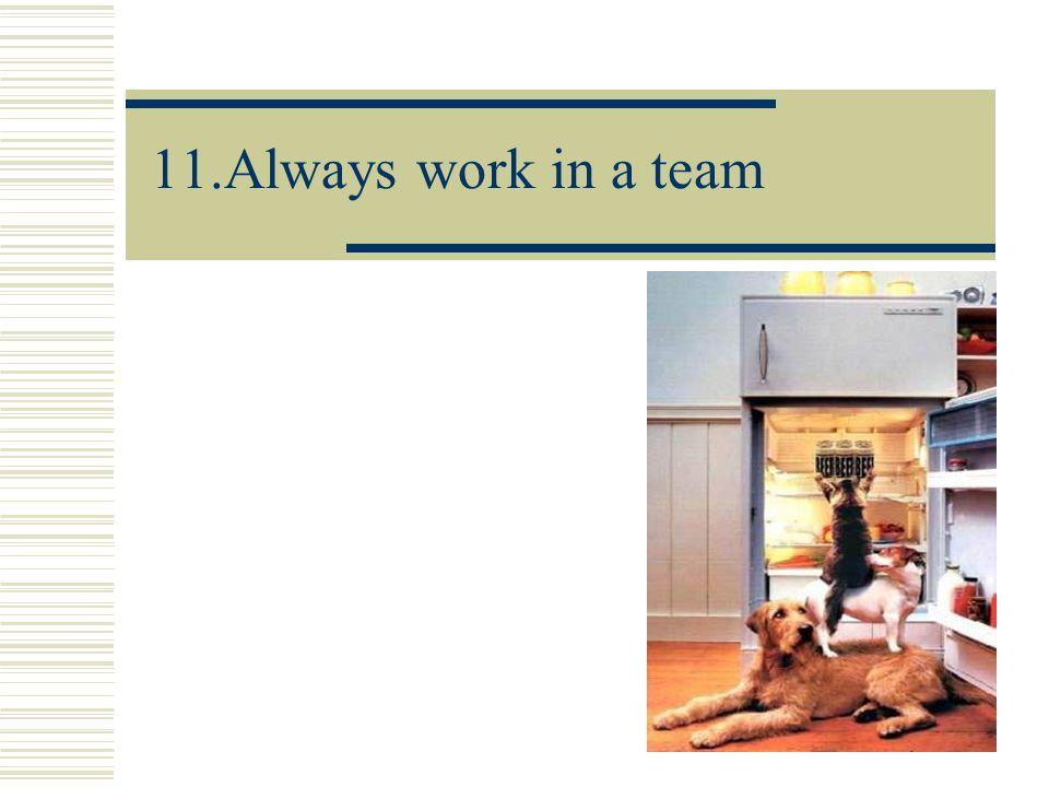 11.Always work in a team