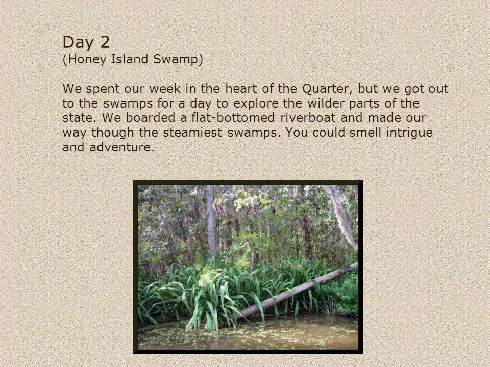 © 2004-2007 David Coyote Day 2 (Honey Island Swamp) We spent our week in the heart of the Quarter, but we got out to the swamps for a day to explore the wilder parts of the state.