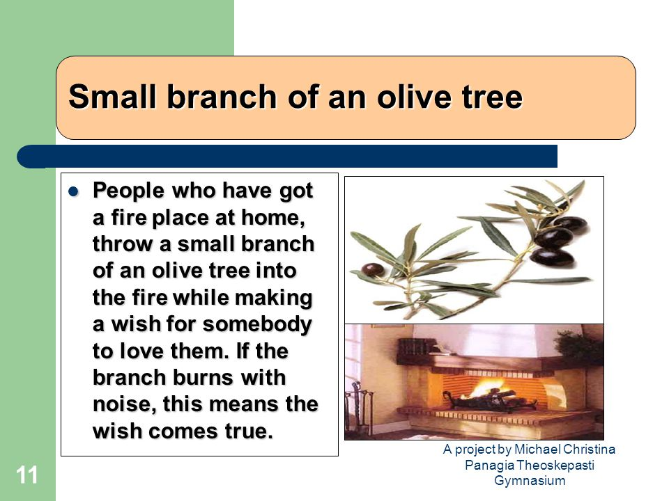 A project by Michael Christina Panagia Theoskepasti Gymnasium 11 Small branch of an olive tree People who have got a fire place at home, throw a small branch of an olive tree into the fire while making a wish for somebody to love them.