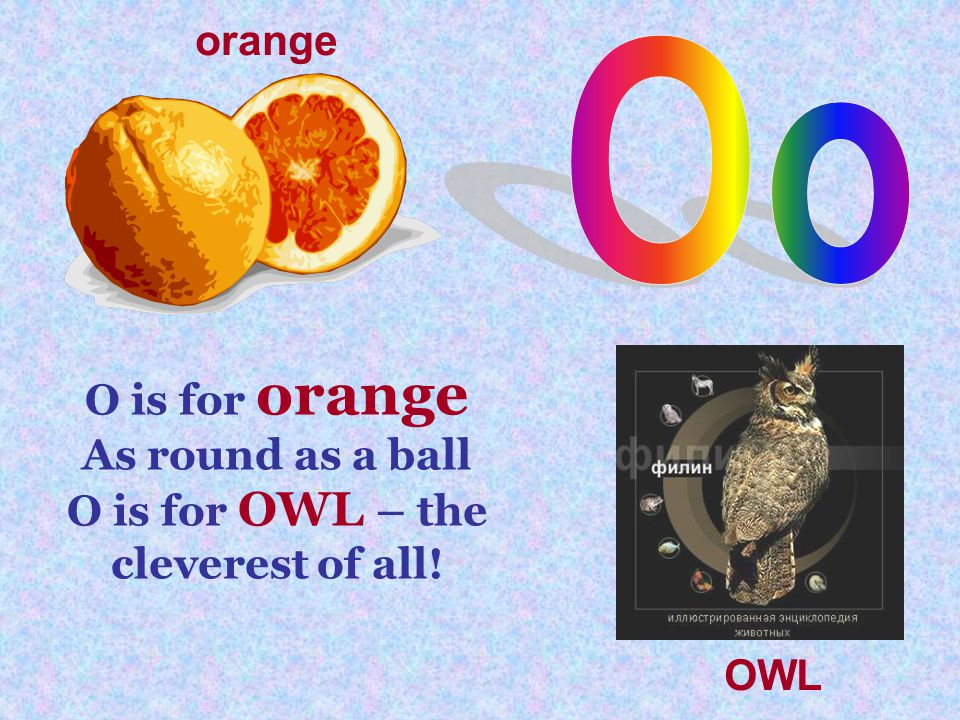 O is for orange As round as a ball O is for OWL – the cleverest of all! orange OWL