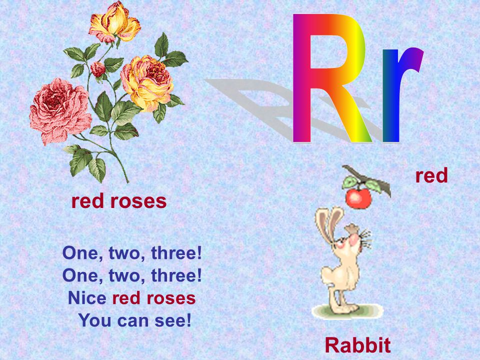 One, two, three! Nice red roses You can see! red roses red Rabbit