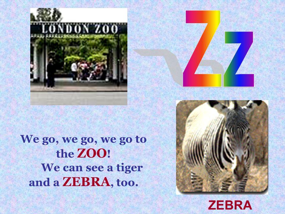 We go, we go, we go to the ZOO ! We can see a tiger and a ZEBRA, too. ZEBRA