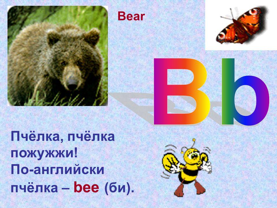 Пчёлка, пчёлка пожужжи! По-английски пчёлка – bee (би). Bear