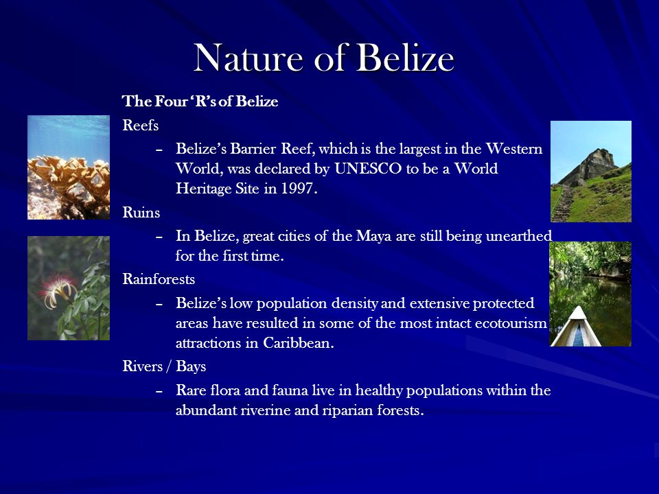 Nature of Belize The Four 'R's of Belize Reefs –Belize's Barrier Reef, which is the largest in the Western World, was declared by UNESCO to be a World Heritage Site in 1997.