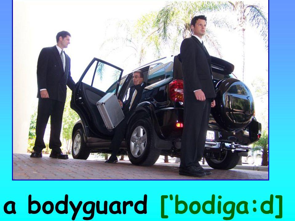 a bodyguard ['bodiga:d]