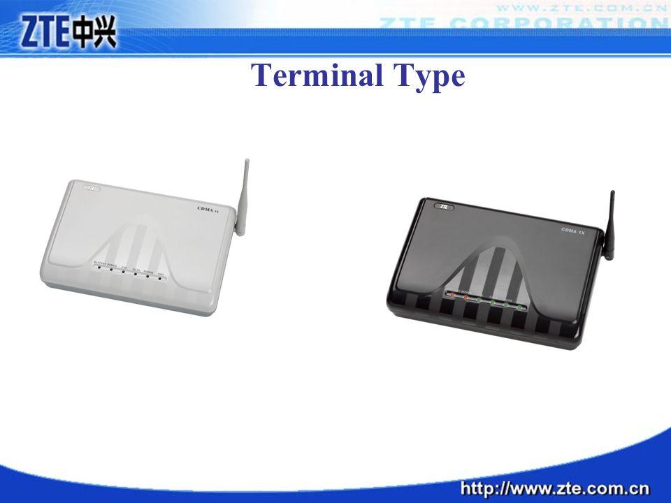 Terminal Type