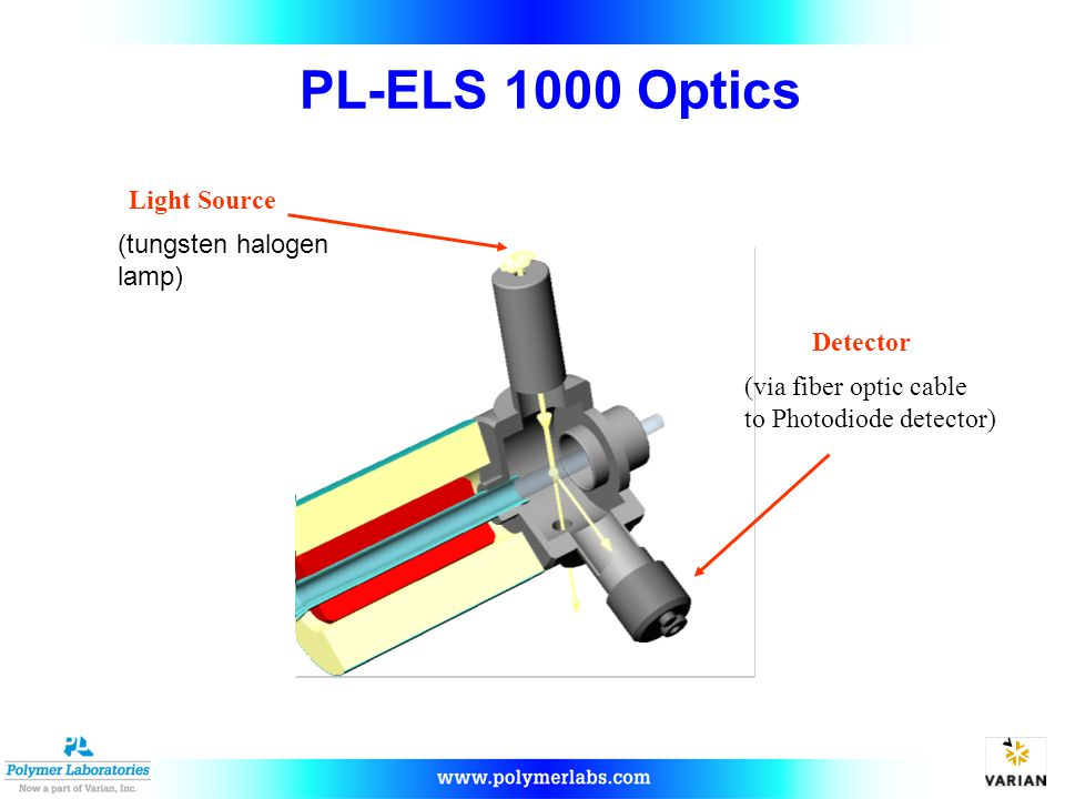 Light Source Detector (via fiber optic cable to Photodiode detector) (tungsten halogen lamp) PL-ELS 1000 Optics