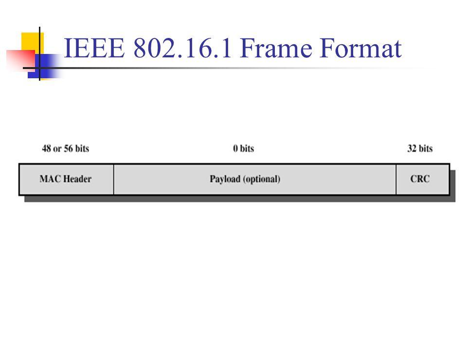 IEEE 802.16.1 Frame Format