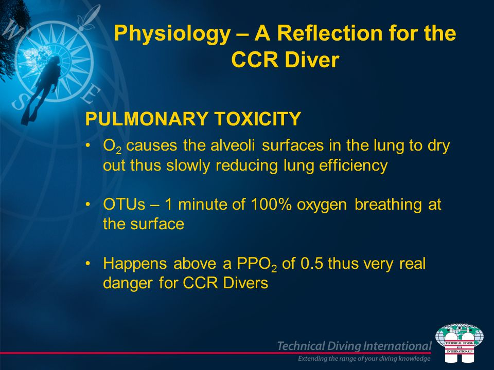 PULMONARY TOXICITY O 2 causes the alveoli surfaces in the lung to dry out thus slowly reducing lung efficiency OTUs – 1 minute of 100% oxygen breathing at the surface Happens above a PPO 2 of 0.5 thus very real danger for CCR Divers Physiology – A Reflection for the CCR Diver