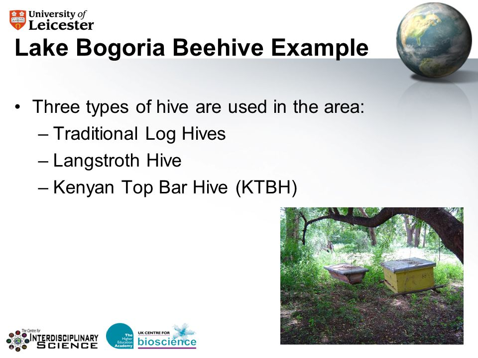 Lake Bogoria Beehive Example Three types of hive are used in the area: –Traditional Log Hives –Langstroth Hive –Kenyan Top Bar Hive (KTBH)