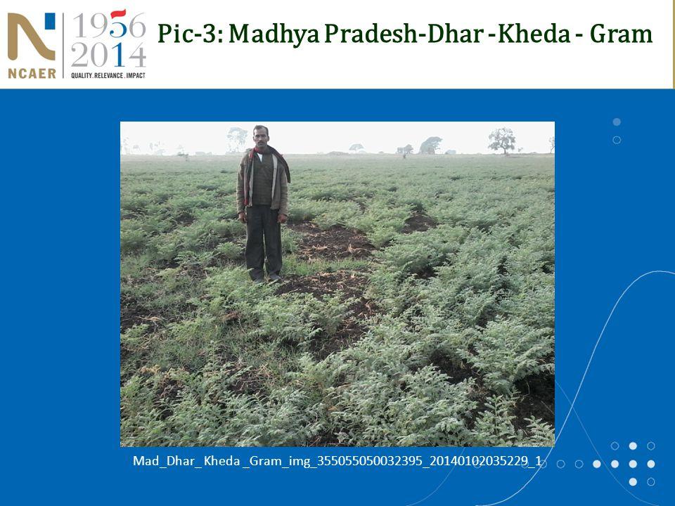 Pic-3: Madhya Pradesh-Dhar -Kheda - Gram