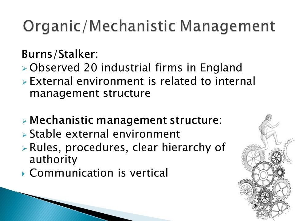 Burns/Stalker:  Observed 20 industrial firms in England  External environment is related to internal management structure  Mechanistic management structure:  Stable external environment  Rules, procedures, clear hierarchy of authority  Communication is vertical