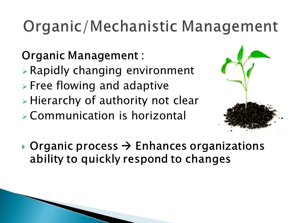 Organic Management :  Rapidly changing environment  Free flowing and adaptive  Hierarchy of authority not clear  Communication is horizontal  Organic process  Enhances organizations ability to quickly respond to changes