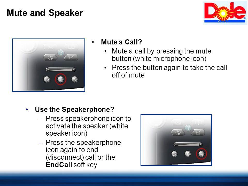 Mute and Speaker Mute a Call.