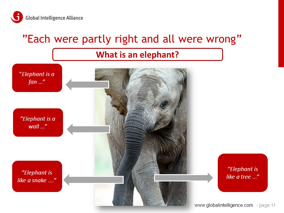 "www.globalintelligence.com ""Each were partly right and all were wrong"" - page 11 ""Elephant is like a snake...."" ""Elephant is a fan..."" ""Elephant is li"