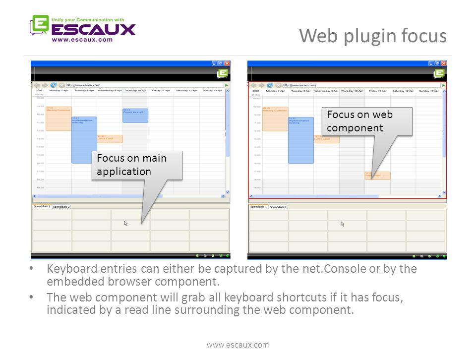 Web plugin focus Keyboard entries can either be captured by the net.Console or by the embedded browser component. The web component will grab all keyb