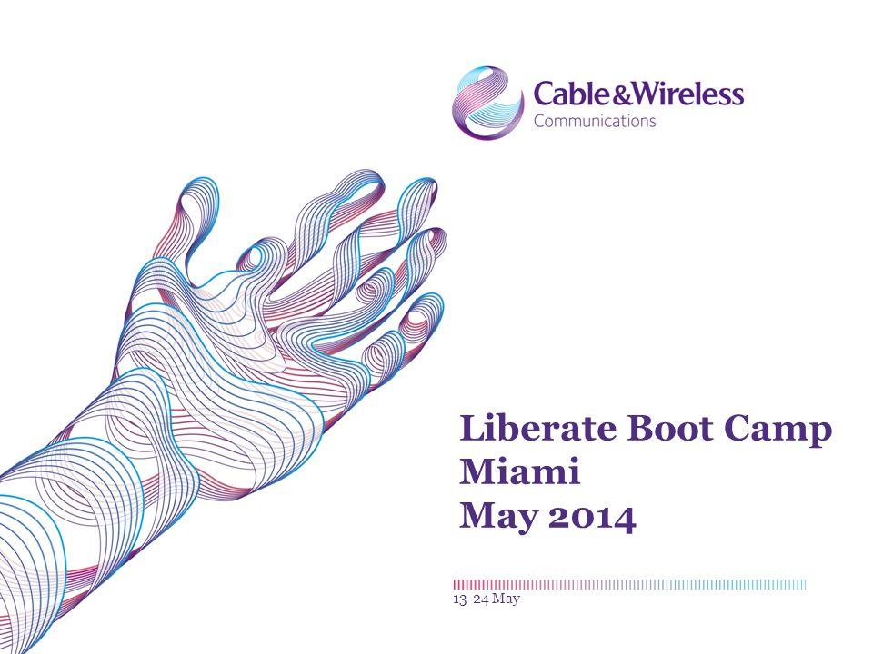 Liberate Boot Camp Miami May 2014 13-24 May