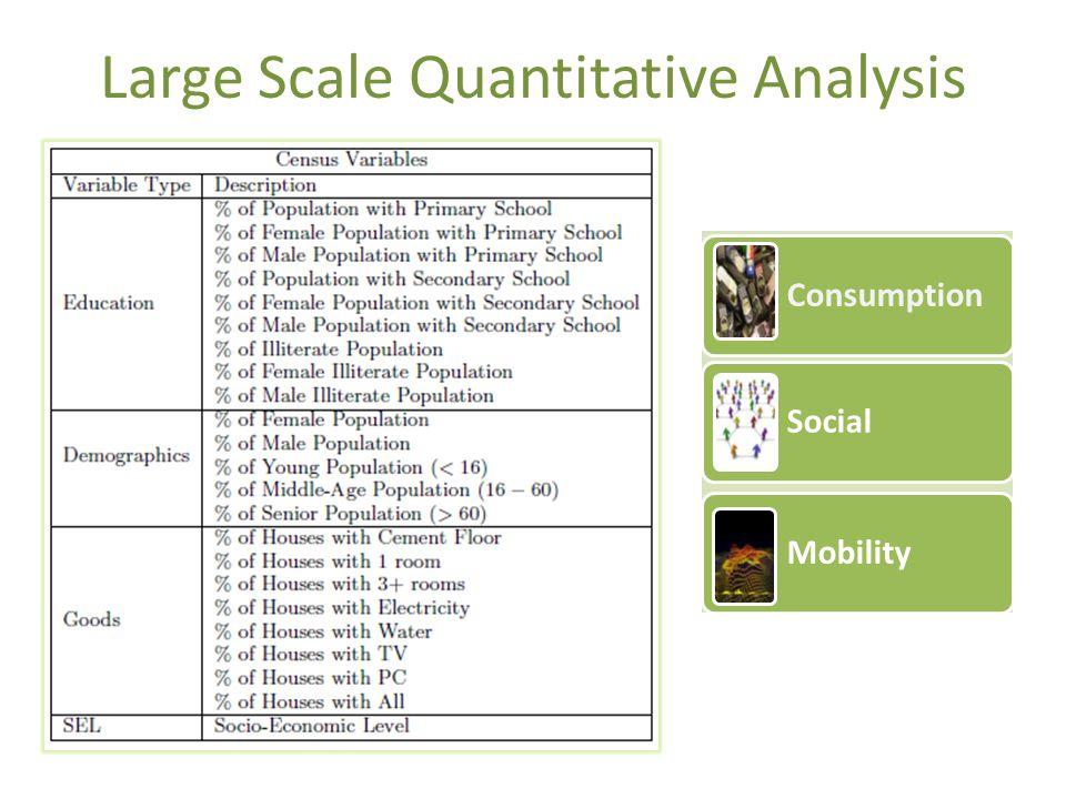Large Scale Quantitative Analysis Consumption Social Mobility