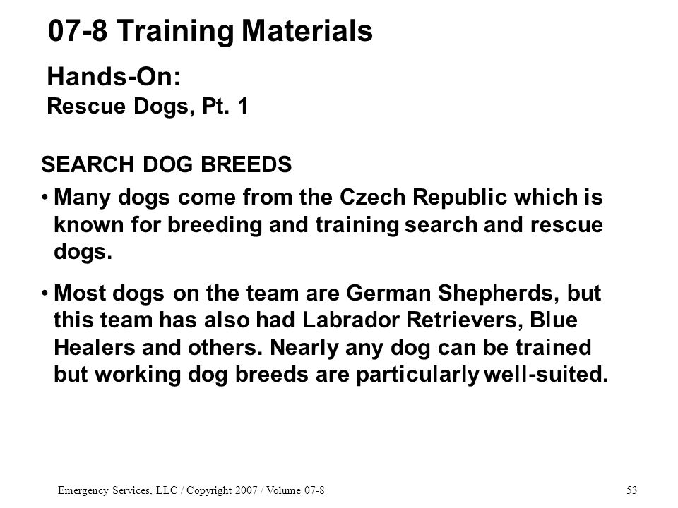Emergency Services, LLC / Copyright 2007 / Volume 07-853 SEARCH DOG BREEDS Many dogs come from the Czech Republic which is known for breeding and trai