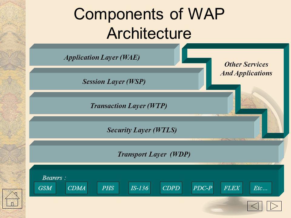 WWW Protocol Stack TCP/IP UDP/IP TLS - SSL HTTP HTML Java Script