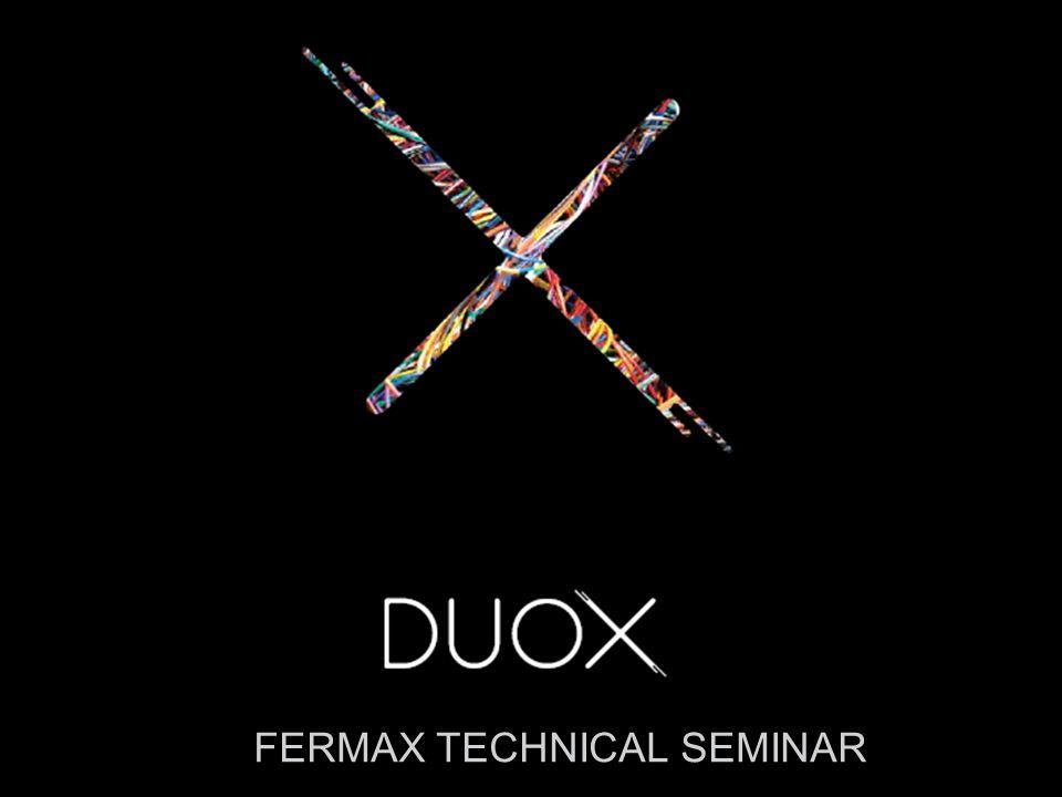 FERMAX TECHNICAL SEMINAR