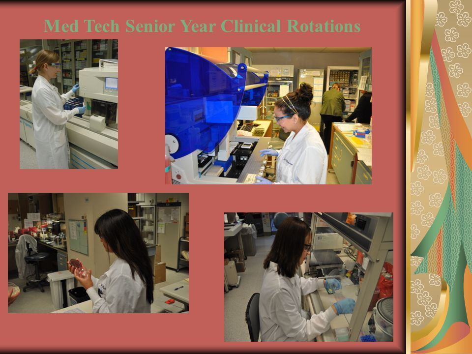 Med Tech Senior Year Clinical Rotations