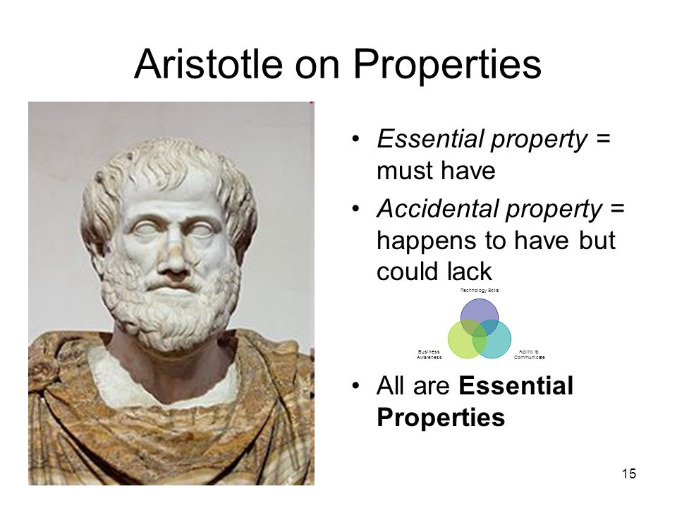 15 Aristotle on Properties Essential property = must have Accidental property = happens to have but could lack All are Essential Properties Technology Skills Ability to Communicate Business Awareness
