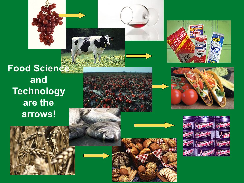 Food Science and Technology are the arrows!