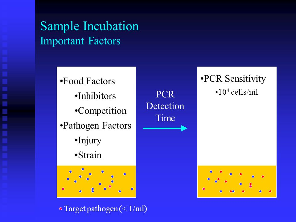 Rapid Detection Method BAX ® PCR system 24 to 30 h 10 2 10 3 10 4 10 5 10 6 10 7 10 1 10 0 Bailey, J.S.