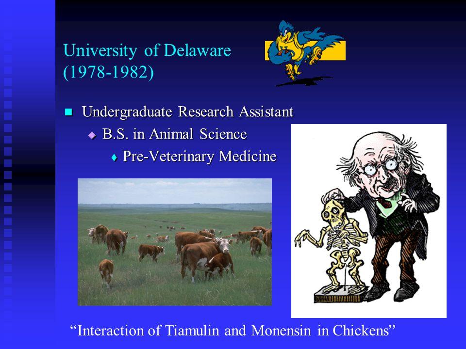 University of Delaware (1978-1982) Undergraduate Research Assistant Undergraduate Research Assistant  B.S.