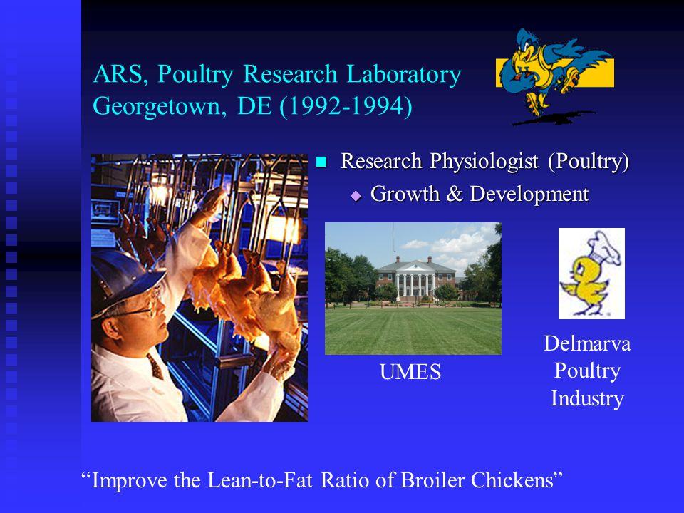 West Virginia University (1988-1992) Assistant Professor of Animal Science Assistant Professor of Animal Science  Growth & Development  Meat Technology Hormonal Regulation of Lipolysis in Chicken Fat Cells