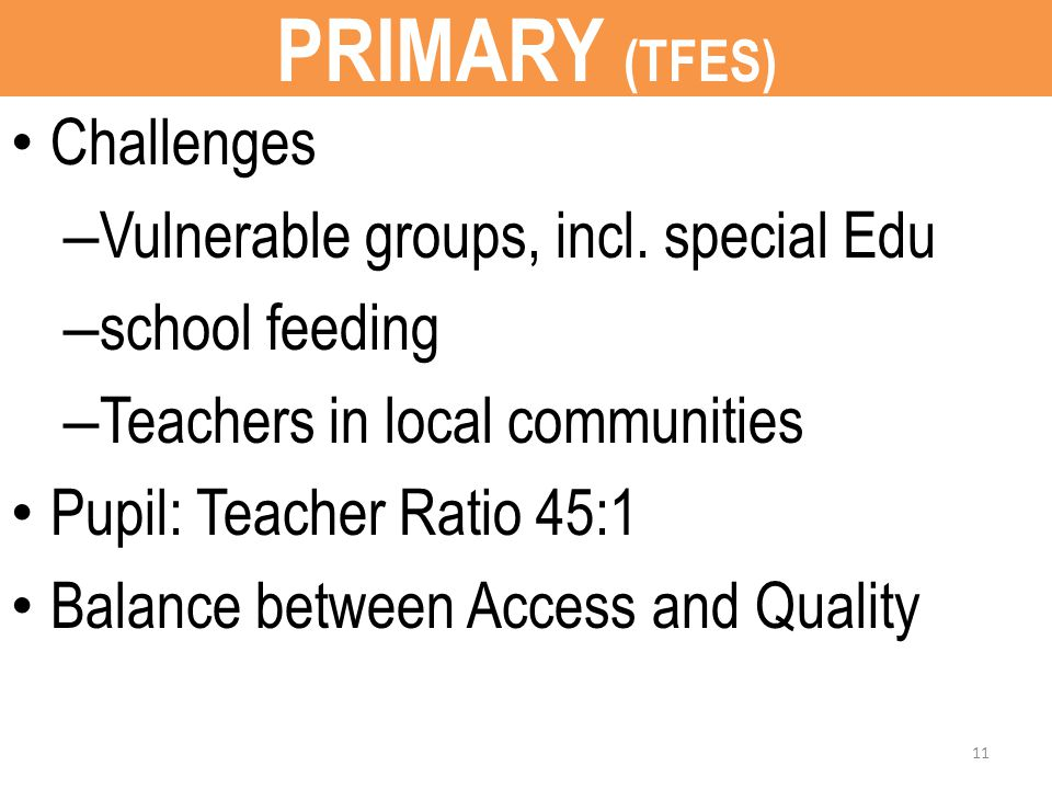 PRIMARY (TFES) Challenges – Vulnerable groups, incl.