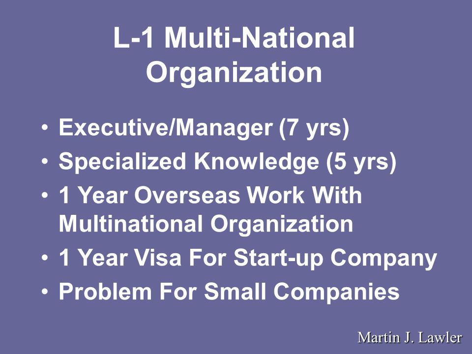 L-1 Multi-National Organization Martin J.