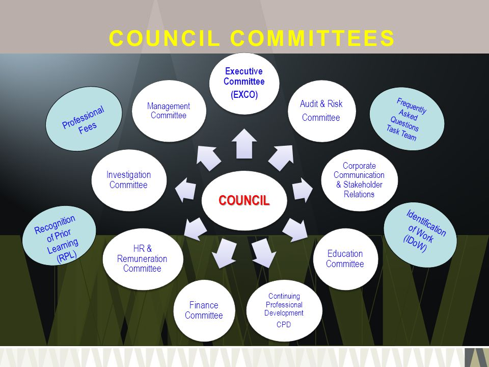 COUNCIL COMMITTEES COUNCIL Executive Committee (EXCO) Audit & Risk Committee Corporate Communication & Stakeholder Relations Education Committee Conti