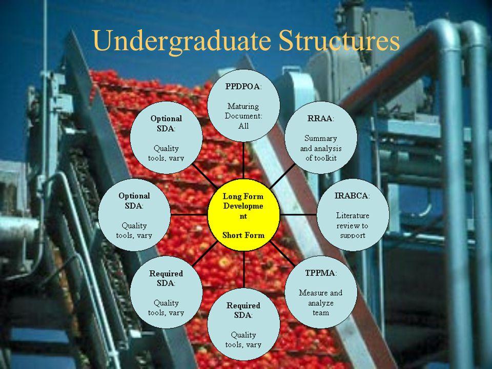 Undergraduate Structures