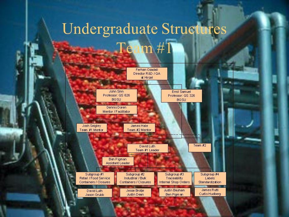 Undergraduate Structures Team #1