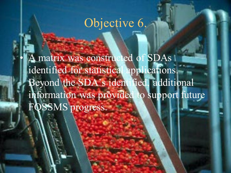 Objective 6. A matrix was constructed of SDAs identified for statistical applications.