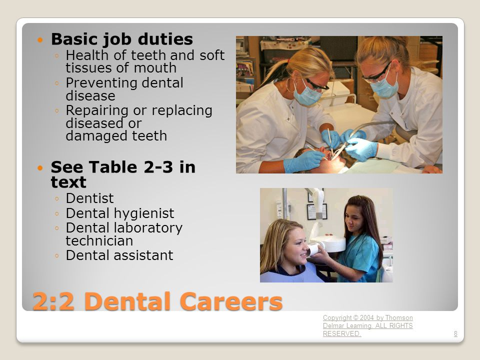 2:2 Dental Careers Basic job duties ◦Health of teeth and soft tissues of mouth ◦Preventing dental disease ◦Repairing or replacing diseased or damaged teeth See Table 2-3 in text ◦Dentist ◦Dental hygienist ◦Dental laboratory technician ◦Dental assistant Copyright © 2004 by Thomson Delmar Learning.