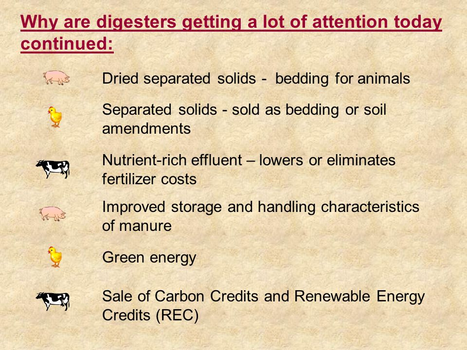Dried separated solids - bedding for animals Separated solids - sold as bedding or soil amendments Nutrient-rich effluent – lowers or eliminates fertilizer costs Improved storage and handling characteristics of manure Sale of Carbon Credits and Renewable Energy Credits (REC) Green energy Why are digesters getting a lot of attention today continued:
